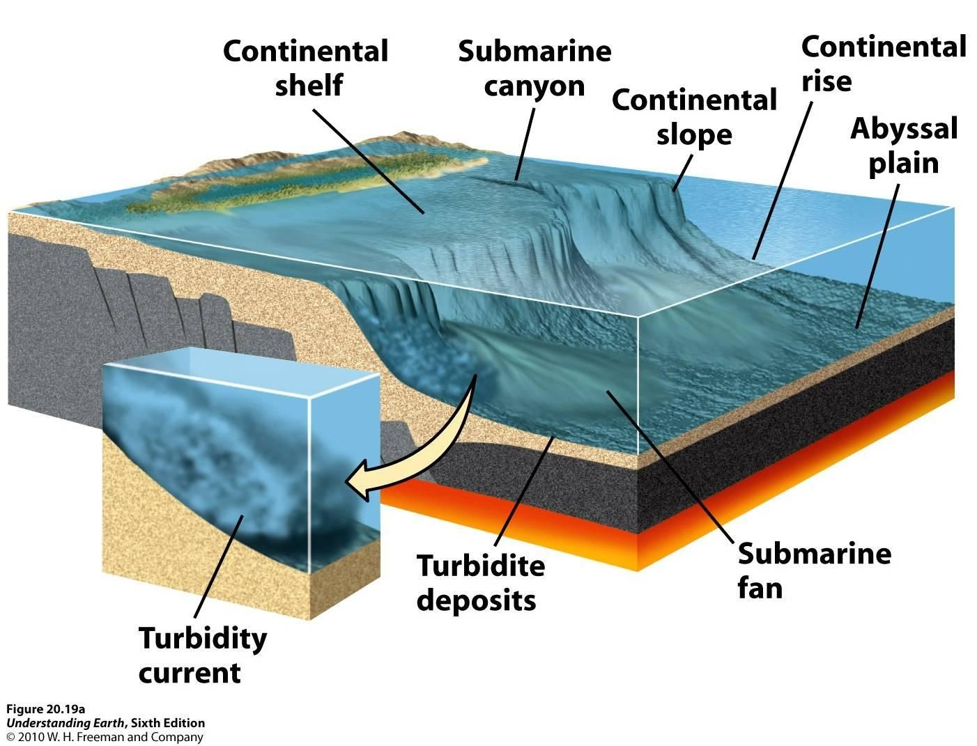 Turbidity Current | submarine canyons and fans, and turbidity currents