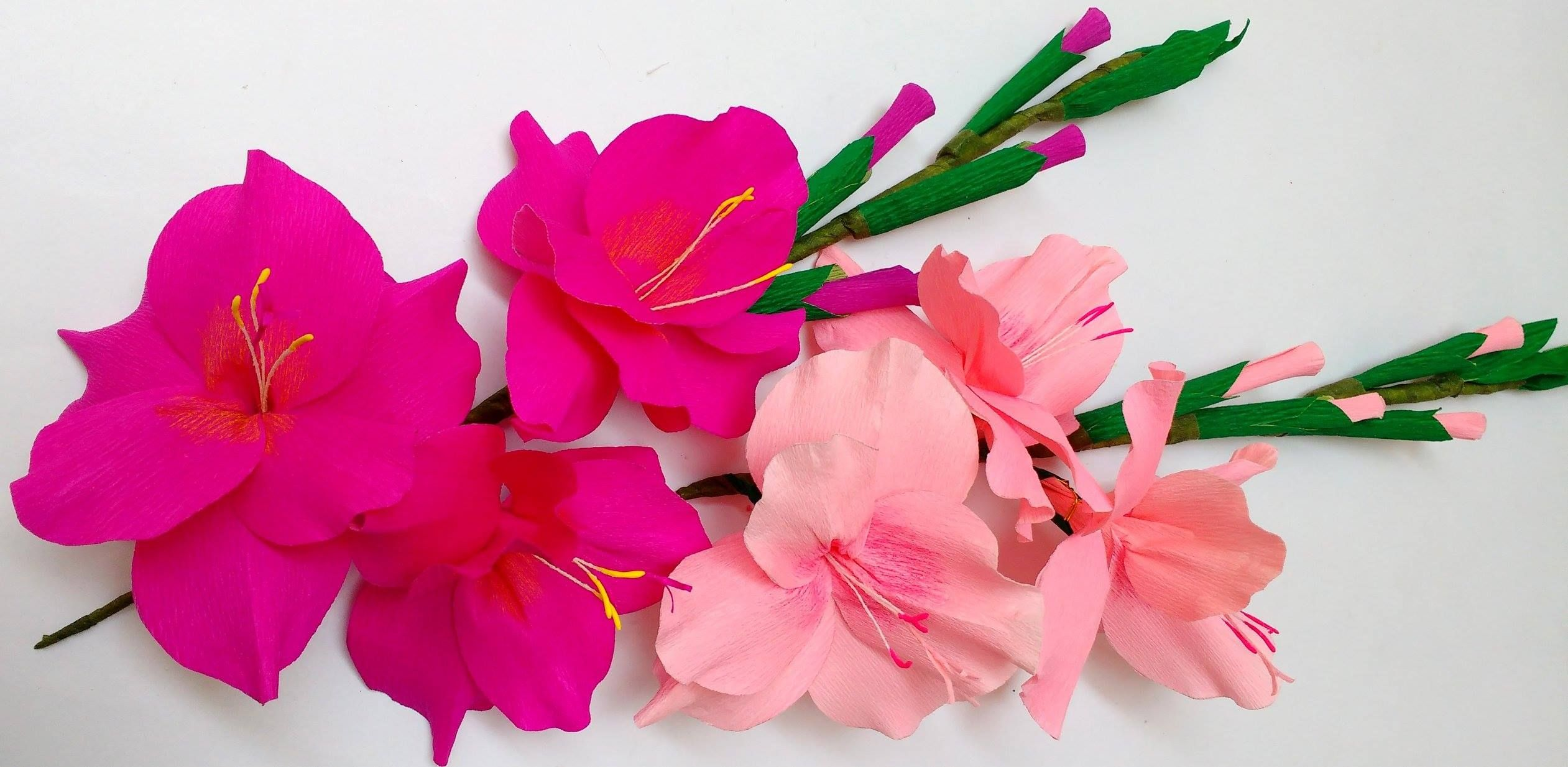Pin By Anesha Haresh On Paper Flowers Pinterest Paper Flowers