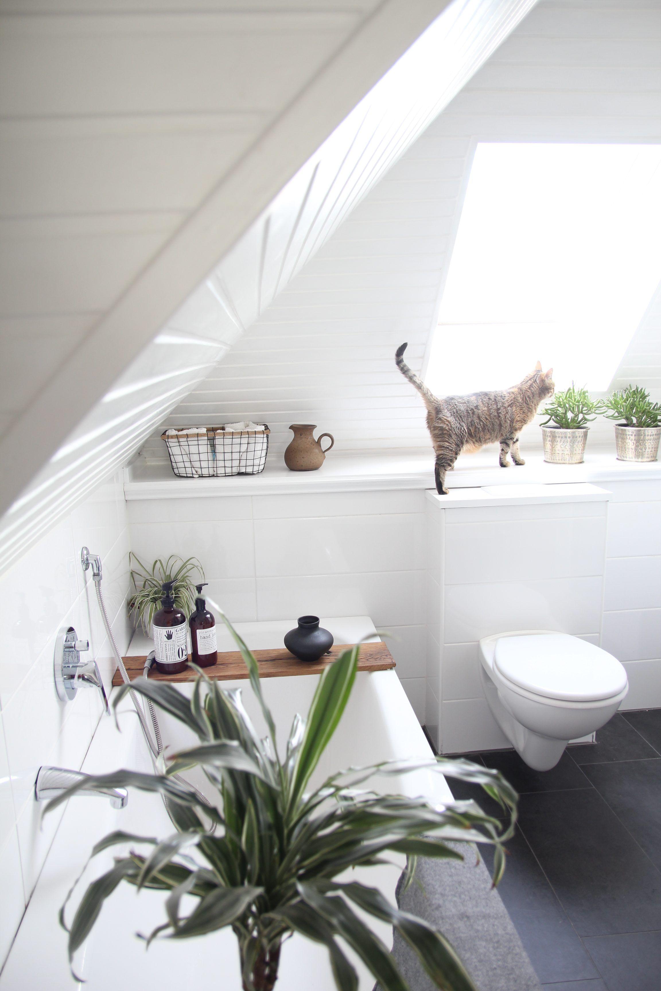 Badezimmer design natur inspiriert badezimmer selbst renovieren vorhernachher  wohnung einrichten