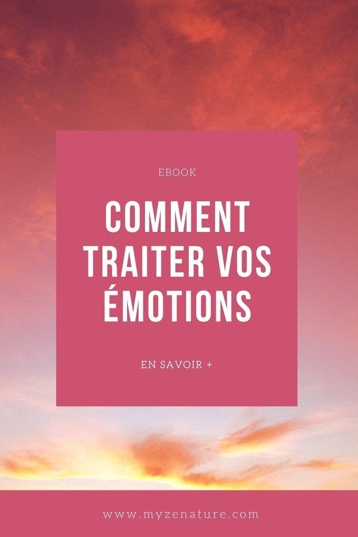 Comment Traiter Vos Emotions En 2021 Emotions Gerer Ses Emotions Estime De Soi