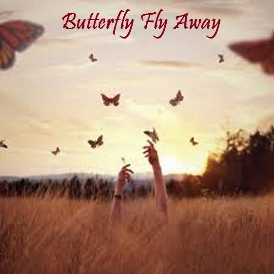 Butterfly Fly Away - Miley Cyrus