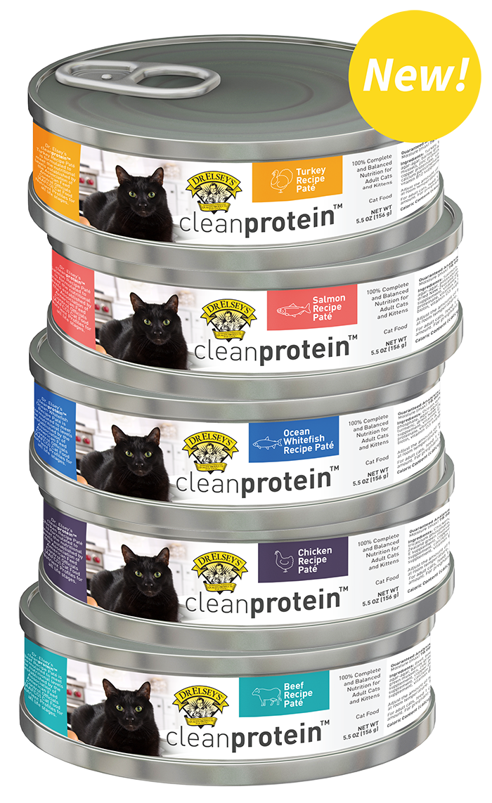 Dr Elsey S Precious Cat Attract Training Cat Litter 20 Lb Visit The Image Link More Details This Is A Cat Training Best Cat Litter Natural Cat Litter
