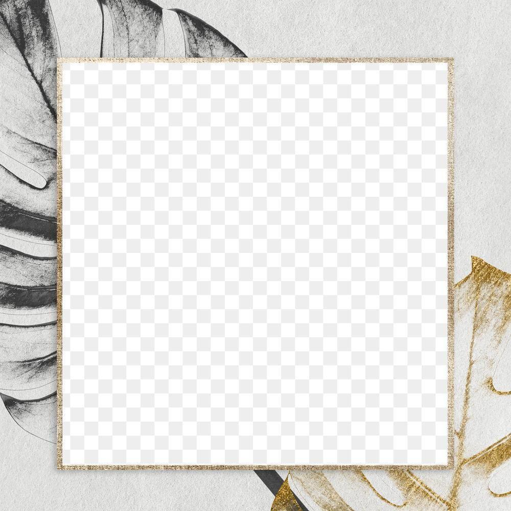 Download Premium Png Of Golden Square Monstera Frame Design Element Frame Design Design Element Frame