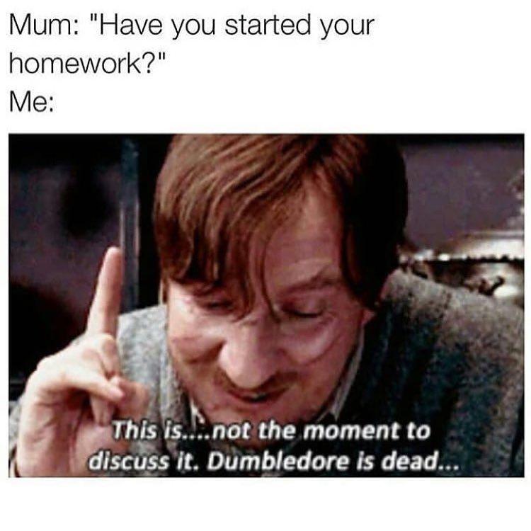 Yep Harrypotter Ravenclaw Hufflepuff Gryffindor Slytherin Meme Hogwarts Harry Potter Stories Deathly Hallows Story Harry Potter Fantastic Beasts