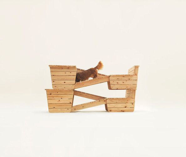 Amazingly Weird Architecture For Dogs, From Muji's Creative Guru