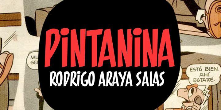 Pintanina - Webfont & Desktop font « MyFonts
