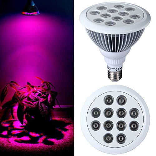 Special Offers - Pepnice 12W Grow Lamp for Indoor Plant 12 LEDs 3 Blue/9 Red Use for the Hydroponic Garden Greenhouse E27 Socket (12W 12LEDs) Review - In stock & Free Shipping. You can save more money! Check It (October 22 2016 at 07:18AM) >> http://growlightusa.net/pepnice-12w-grow-lamp-for-indoor-plant-12-leds-3-blue9-red-use-for-the-hydroponic-garden-greenhouse-e27-socket-12w-12leds-review/
