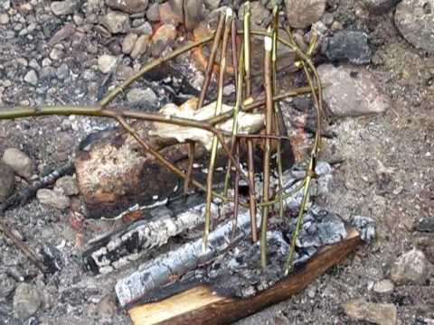 Bushcraft Cooking Ponassing Fish Over A Campfire