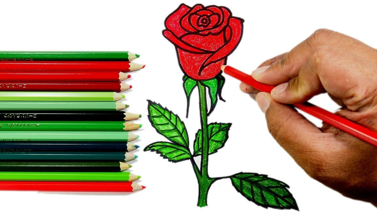 How To Draw A Rose Flower Step By Step Easy Flower Step By Step Easy Drawings For Beginners Drawing Videos For Kids