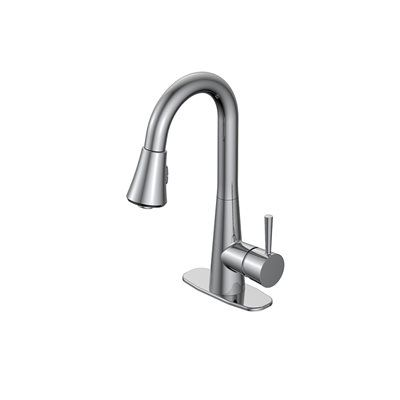 Jacuzzi Fp4a0068 Carson 1 Handle Utility Sink Faucet Pulldown Sprayer