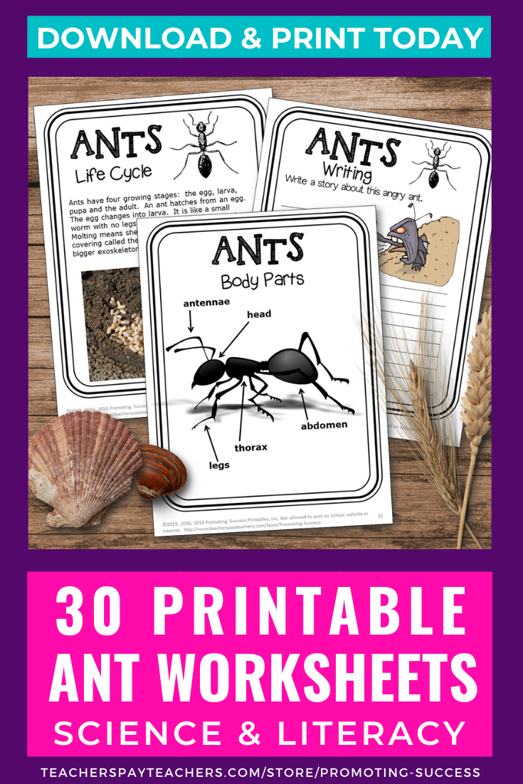 Elementary Science And Reading Comprehension Ants Worksheets For Kids 2nd 3rd 4th Grade Printables Ants Lesson Plans Ant Lesson First Grade Themes [ 1102 x 735 Pixel ]