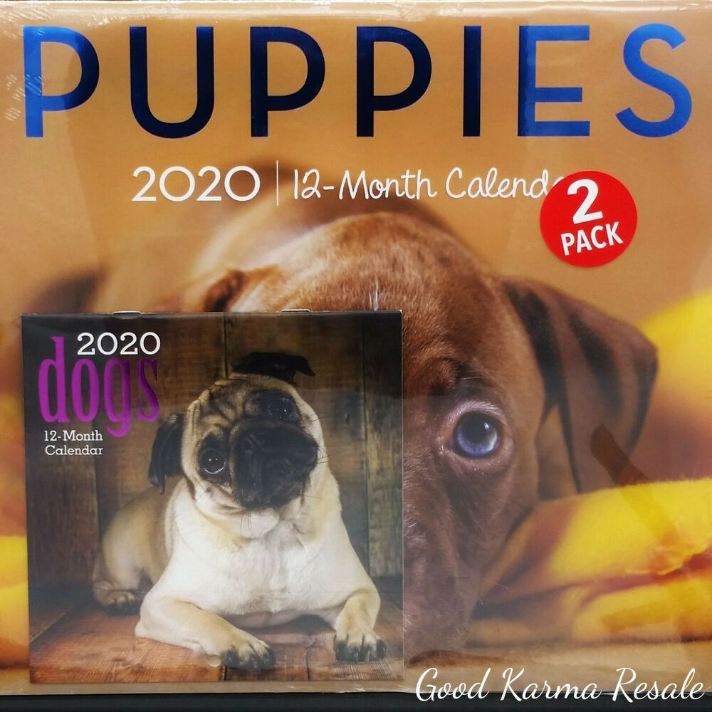 2020 Calendar Puppies 12 Monthly Page Format, Wall