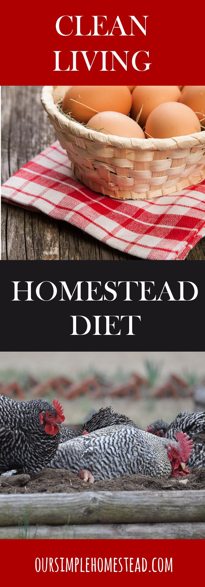Living Clean - A Homestead Diet - For years I've been told; no-fat, low-fat, low-carb, count calories, low-sugar, high protein, and on and on.  A few years ago I made the decision to stop following all that advice and create a plan to start a healthy clean eating way of life.
