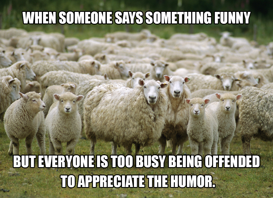 Funny Black Sheep Meme : When someone says something funny but everyone is too busy being