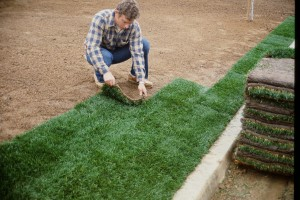 Professional Sod Installation Guide Southland Sod Farms Once Sod Is Delivered Step 1 Step 1 1 Lay Sod Immediately Upon De In 2020 Sod Installation Sod Installation
