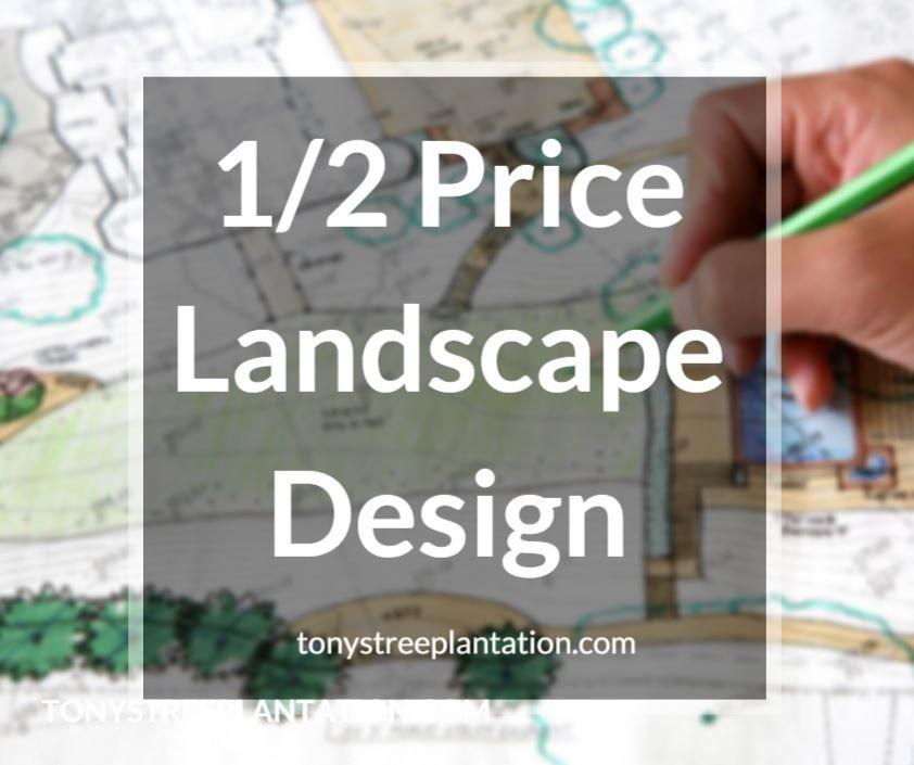 We're Your Home For Custom Landscape Design!