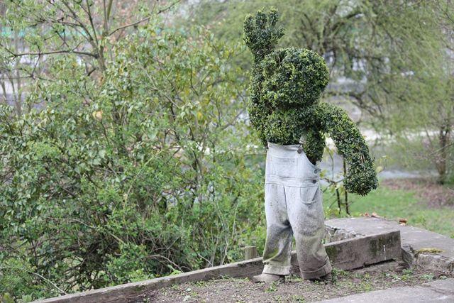 Bushman. Durbuy, Belgium