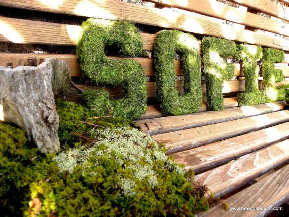 Moss Covered Letters Interesting Camp Little School Will Be Spelled Out In Moss Covered Letters Inspiration Design