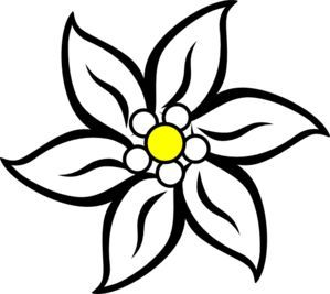 Edelweiss Coloring Page