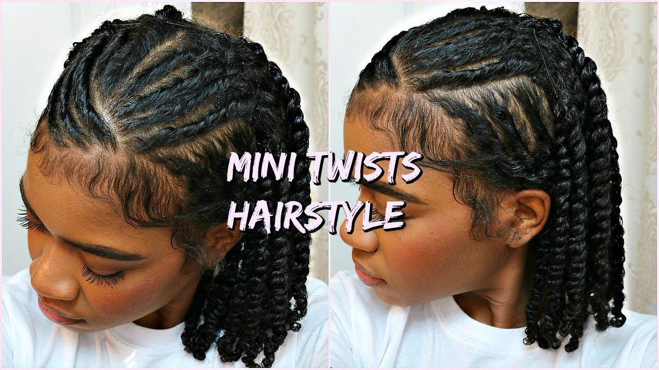 Mini Twists Protective Hairstyle For Natural Curly Hair Mini Twists Natural Hair Natural Hair Braids Twist Braid Hairstyles