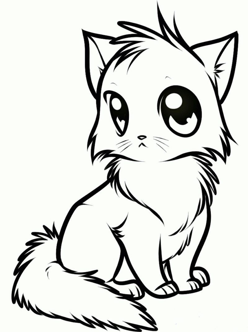 8 Anime cat ideas in 2020 | cat drawing, animal drawings, cat sketch