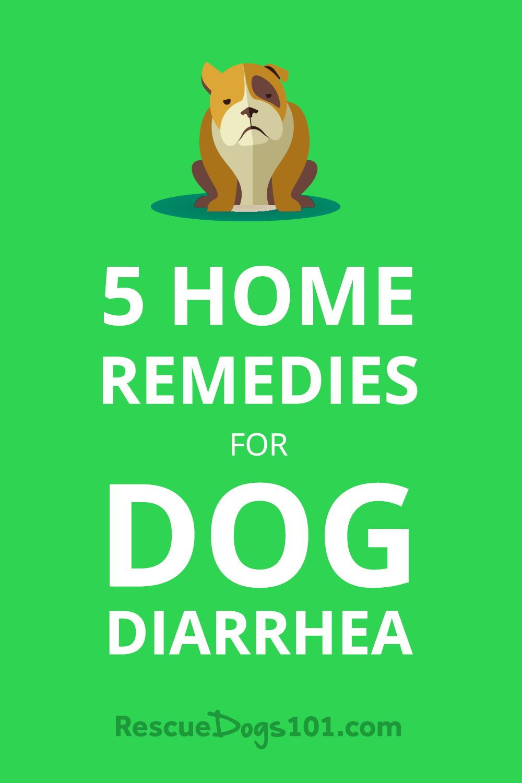 rescue remedy pets australia