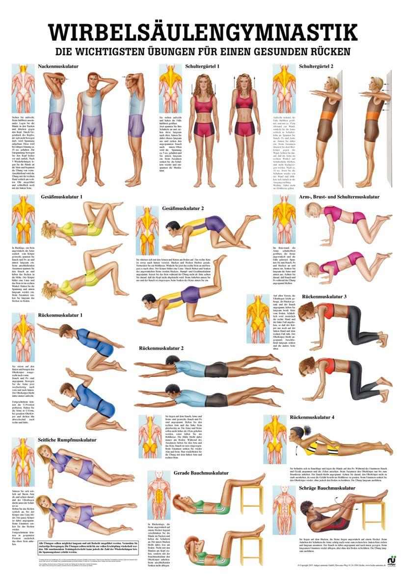 wirbels ulengymnastik yoga yogamatten yoga zubeh r. Black Bedroom Furniture Sets. Home Design Ideas