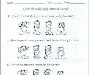 attitude survey paper