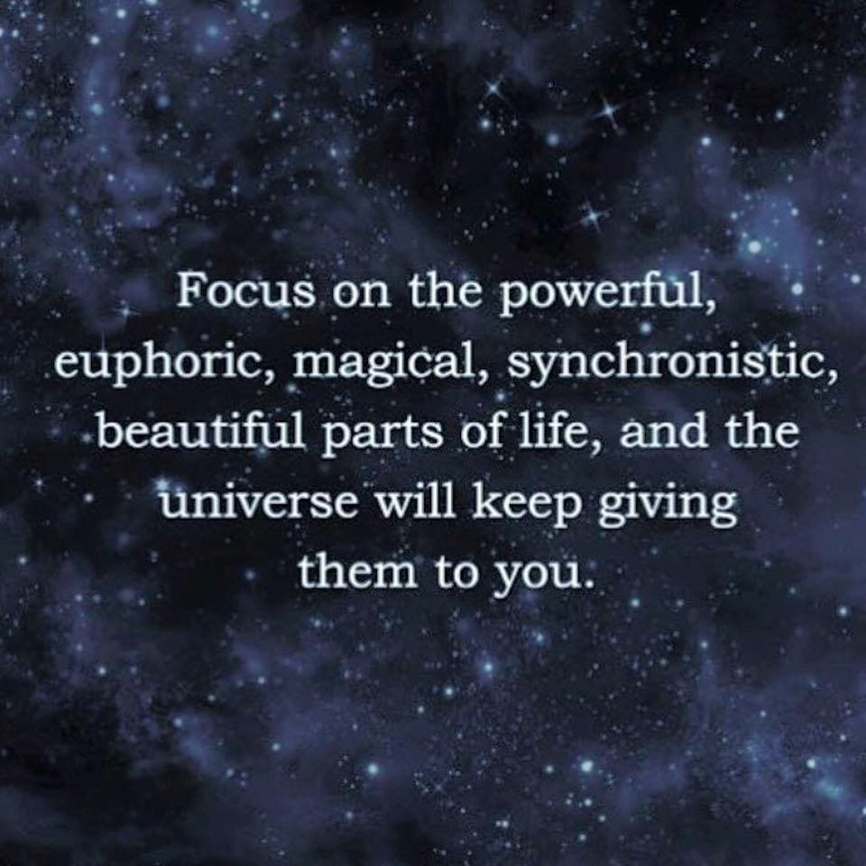 Universe Quotes ✨FOCUS on the Powerful, euphoric, magical, synchronistic  Universe Quotes
