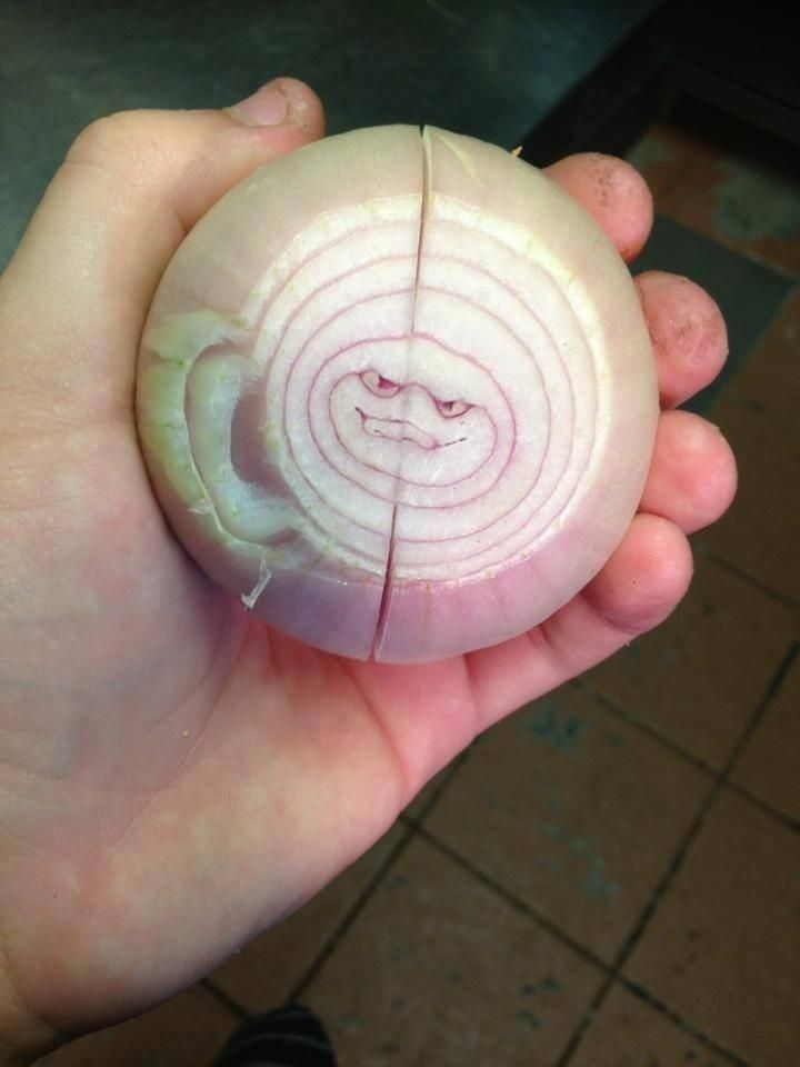 A sinister onion from National Geographic
