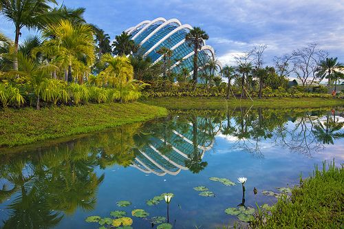 7ecd9c104f40baba07f4a98a2854c683 - Fun Facts About Gardens By The Bay