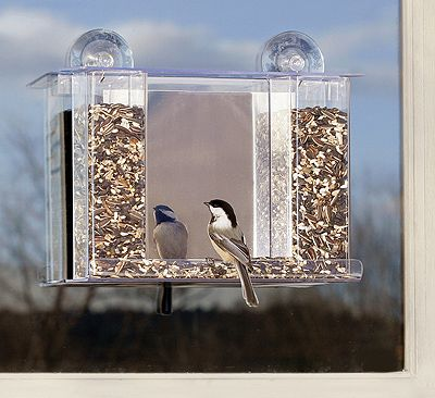Window Bird Feeder With 2 Way Mirror That Attaches By A Suction Cup