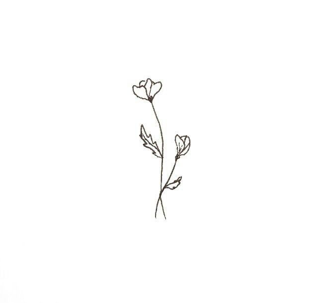 This is a picture of Dynamite Small Flower Drawing
