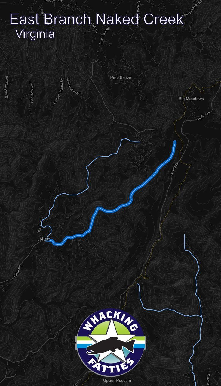 West Branch Naked Creek Trail - Virginia | AllTrails