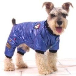 If you have a dog you probably already know that you need to protect him from bad weather. You can easily do that by buying him a lovely dog rain...