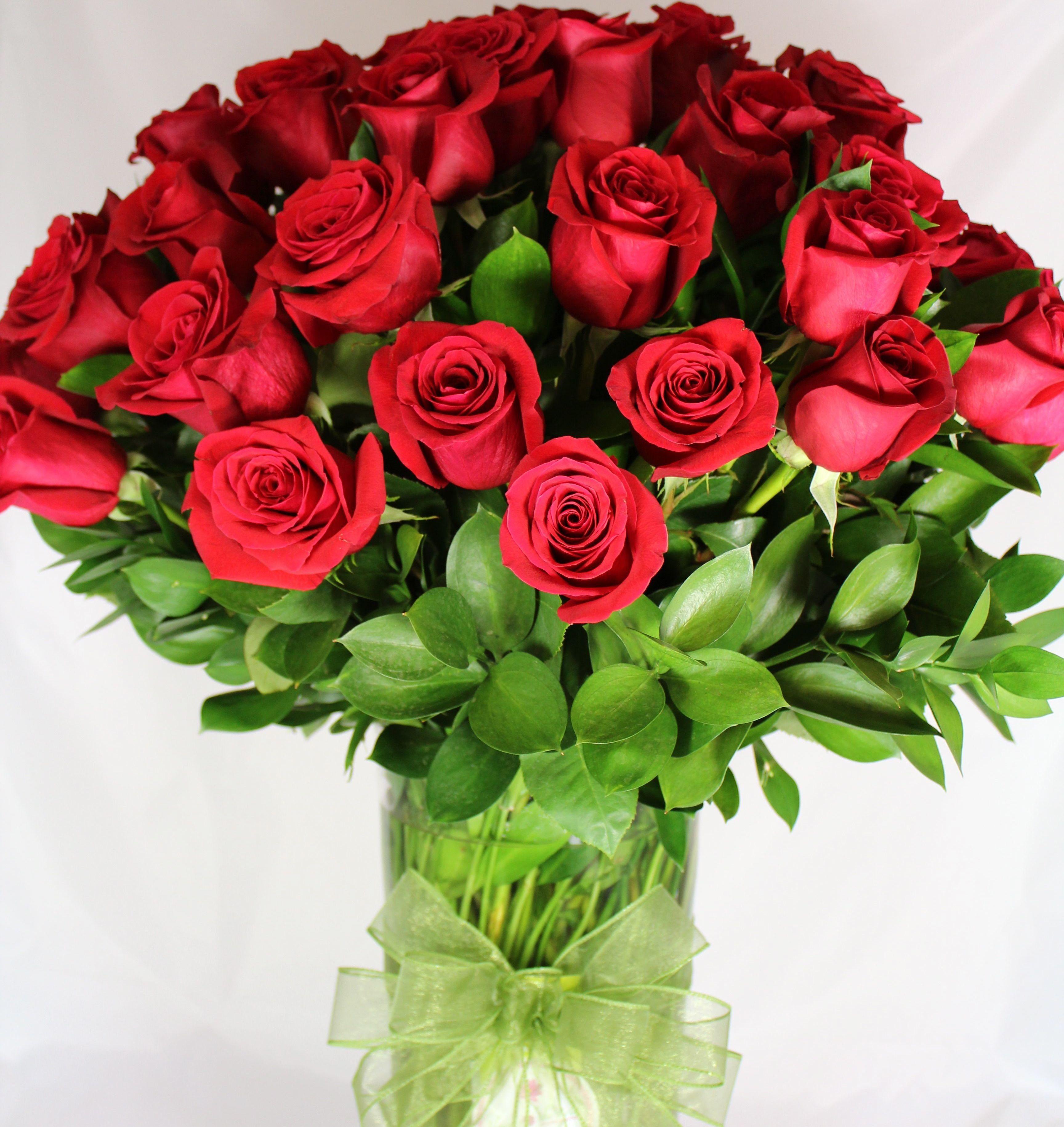 fleur rose rouge roses rouges