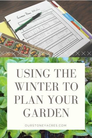 Be sure to take some time this winter to plan your garden.  The cold winter months should give you plenty of time to sit down and make a garden plan.
