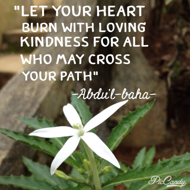Loving Kindness Quotes Fascinating Heart Burn With Loving Kindness  Bahai Quotes  Pinterest  Heart