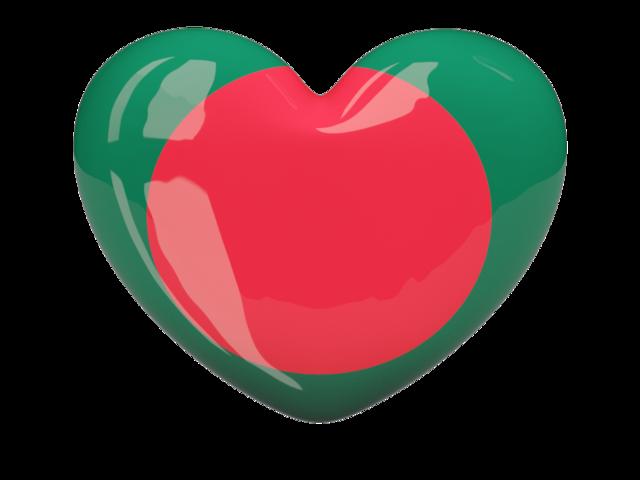 Pin by rosaleencollection on Patterns | Bangladesh flag