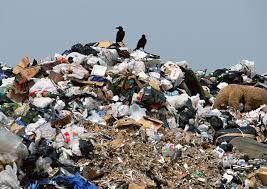 Resultado de imagen para waste