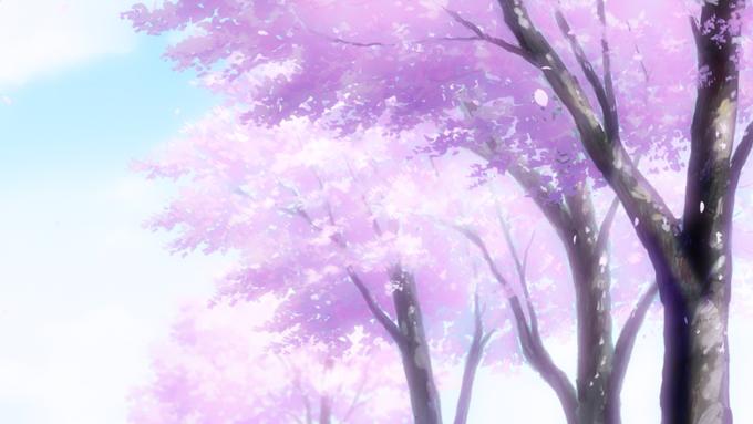 Kyoto Animation Background Art Clannad Anime Scenery Animation Background Anime Cherry Blossom