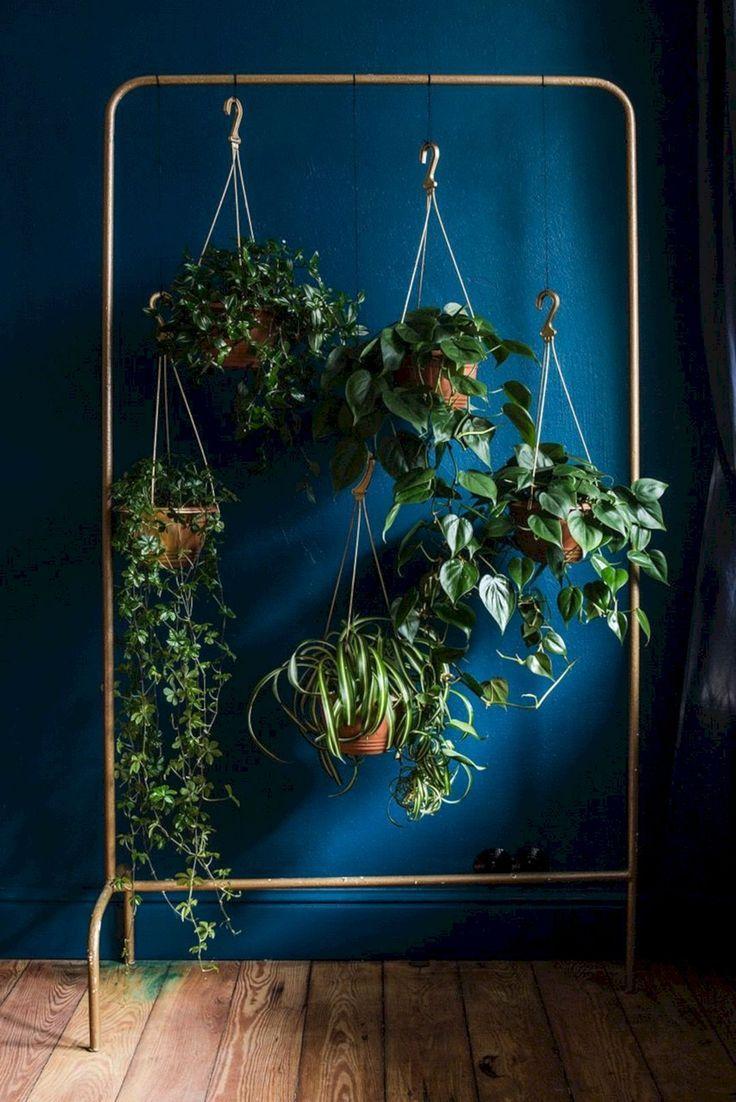 metal plant rack  hanging plants  DIY plant display  wardrobe rack