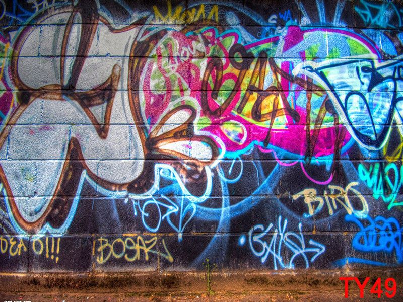 Details about Graffiti Wall Thin Vinyl Photography