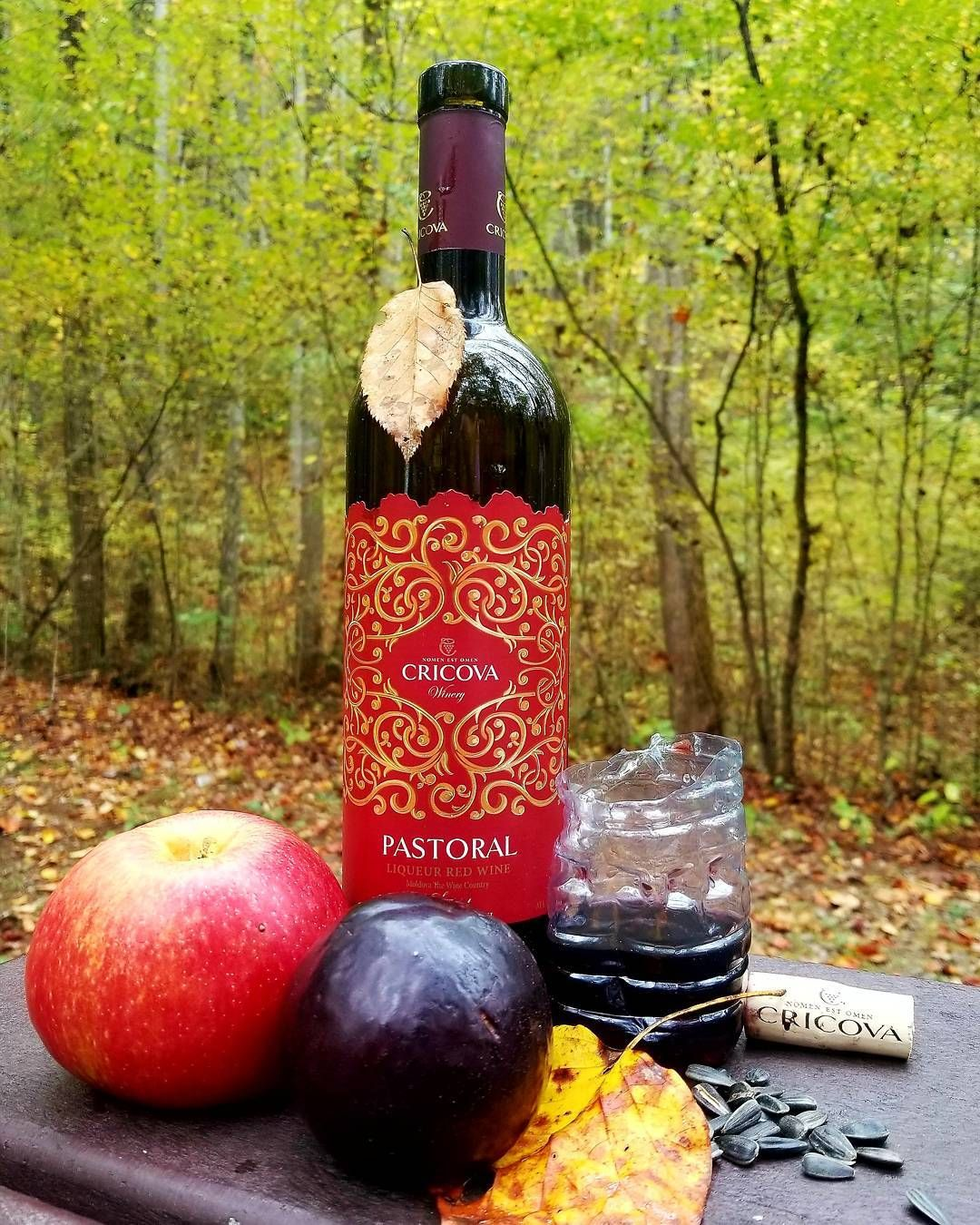 Contest Come Up With The Best Name For This Picture And Win A Bottle Of Cagor Pastoral To Enjoy This Fall Concurs Cine Propune Ce Bottle Cool Names Red Wine