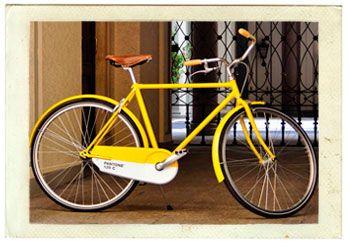 Pantone Bicycle With Images Yellow Pantone Bicycle Pantone