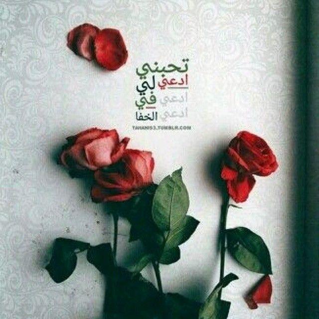 آم ي ر آلذو ق ۅ آلر ق ه ہ On Instagram ضباء تبوك الهﻻل البحر الغروب جدة غرد بصورة البنات حب السعودية تصوير Rose Quotes Beautiful Flowers Flowers