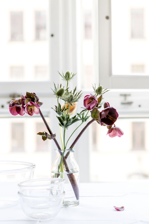 blommor vasastan stockholm