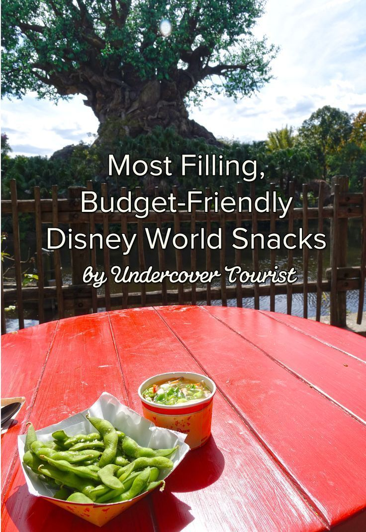 The most filling, budget-friendly snacks at Disney World - Tips on what to buy that will fill you up