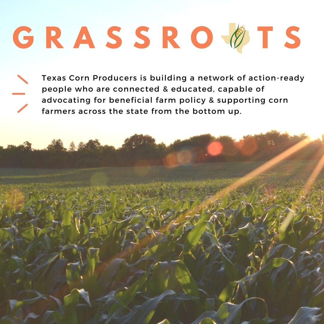7ed44280b52f1ab33192d3d8b2f1ef27 - Texas Organic Farmers And Gardeners Association