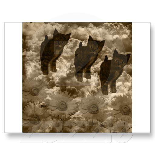 Cat on cloud postcards